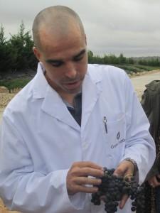 Raúl, enólogo de Portia