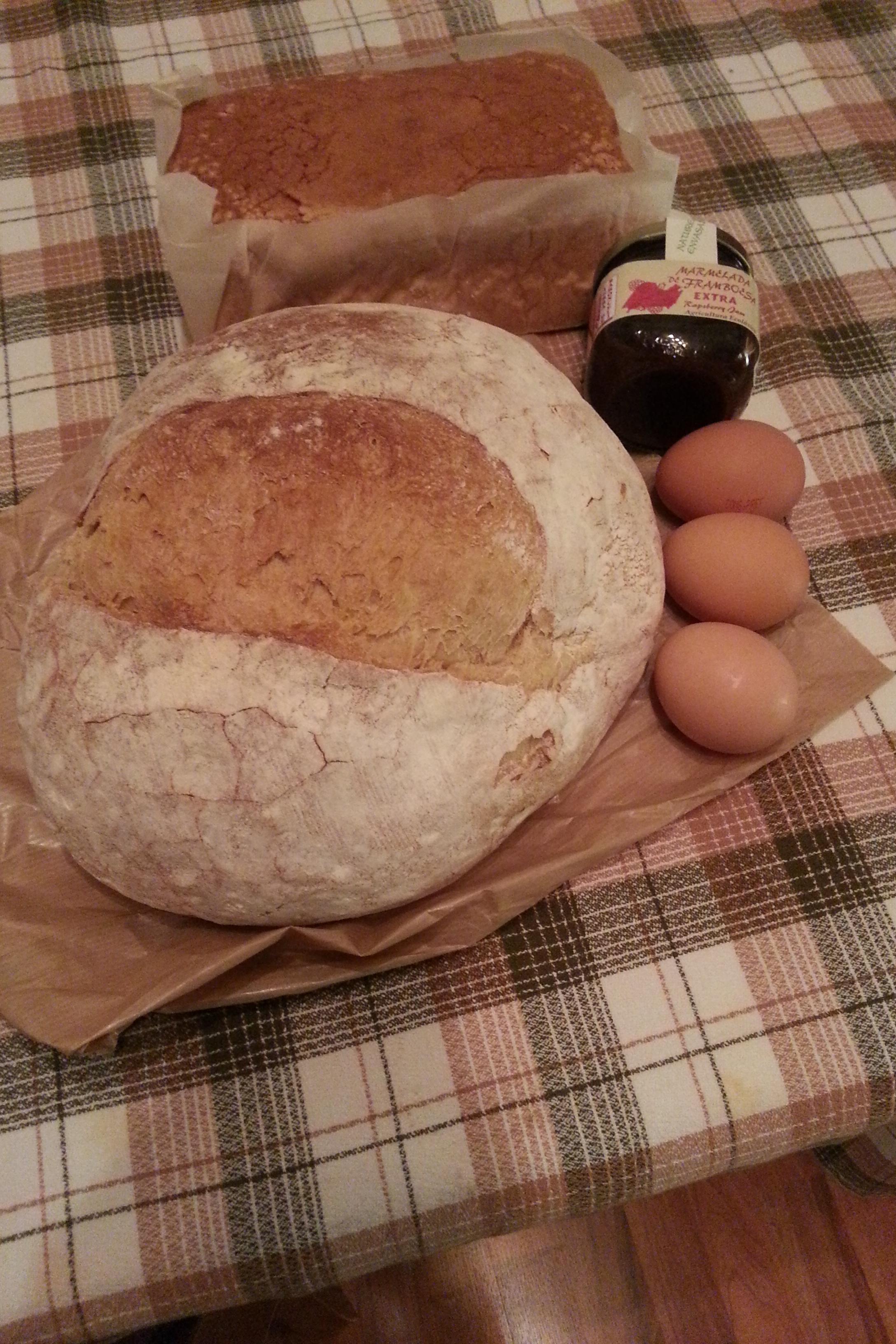 Lo que se vino conmigo a casa: pan, huevos, mermelada y bica