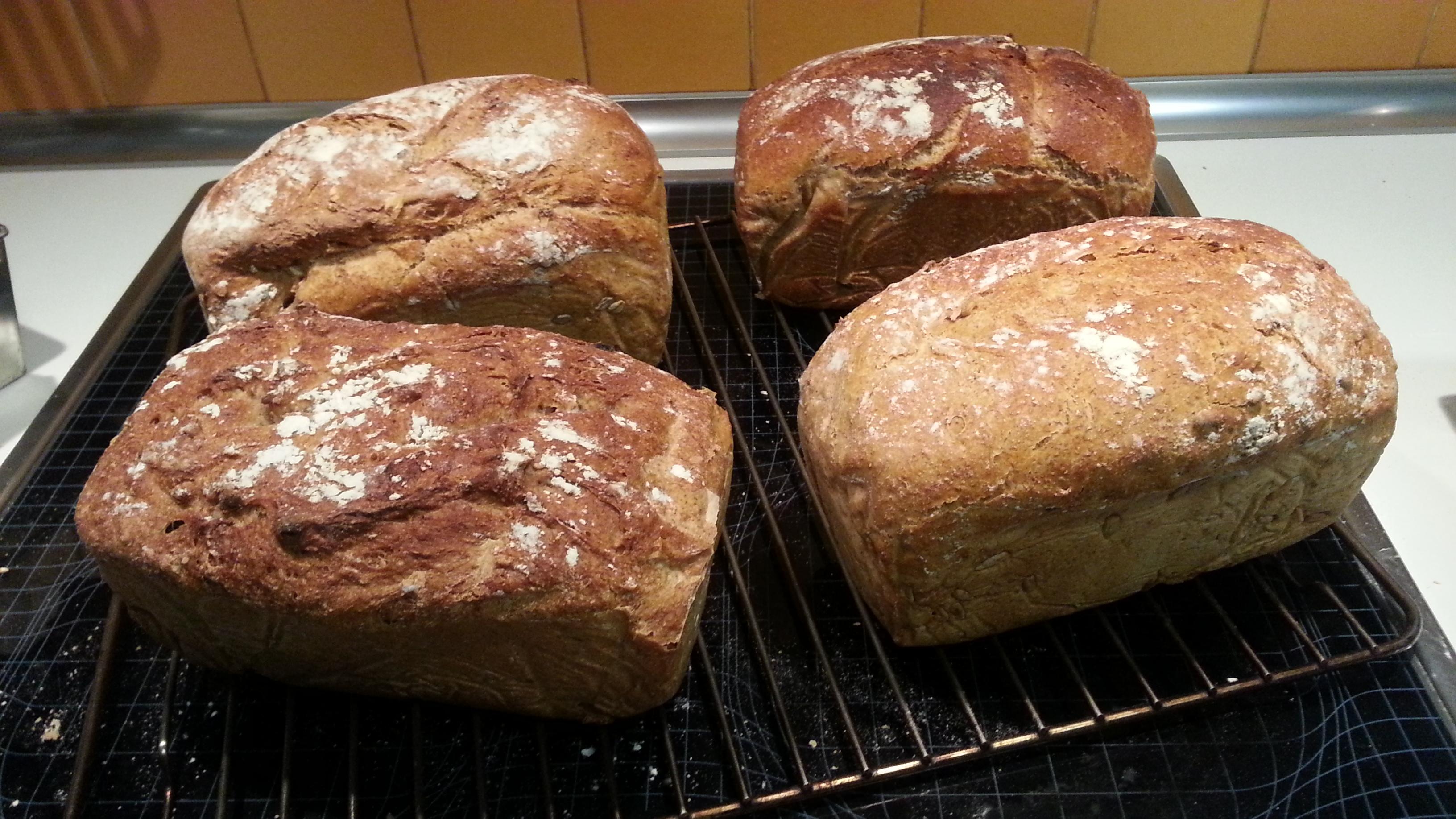 Panes de los alumnos (el mío es el de abajo a la derecha)