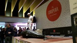 Ronqueo del atún. La Chispería. I Jornadas del atún